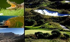 20 måsten i Sydafrika