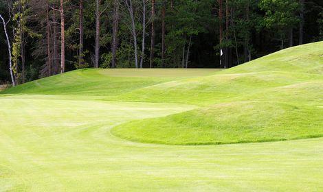Ekholmsnäs Golf - Hål 21.jpg