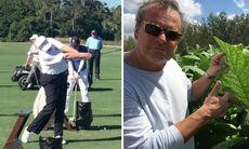 Steffo Törnquist träffade Donald Trump på golfbanan